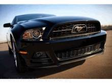 Grille - Pony With Chrome Bezel